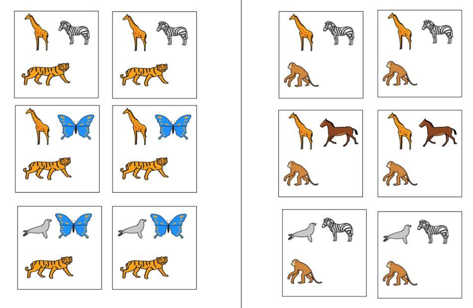 Aufgabenmappe - Tiergruppen sortieren