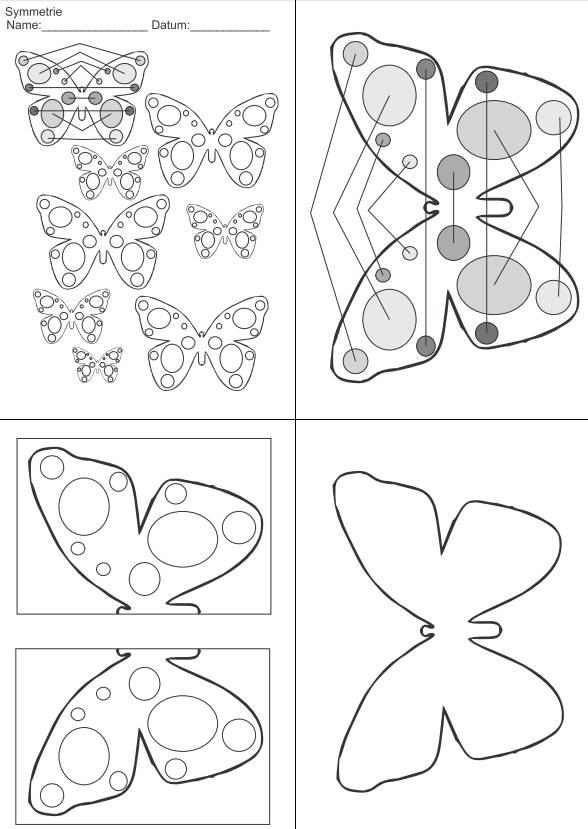 Symmetrie - der Schmetterling
