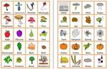 Herbst - Bild-Wort-Karten