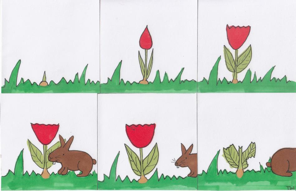 Bildergeschichte Ostern - Frühling