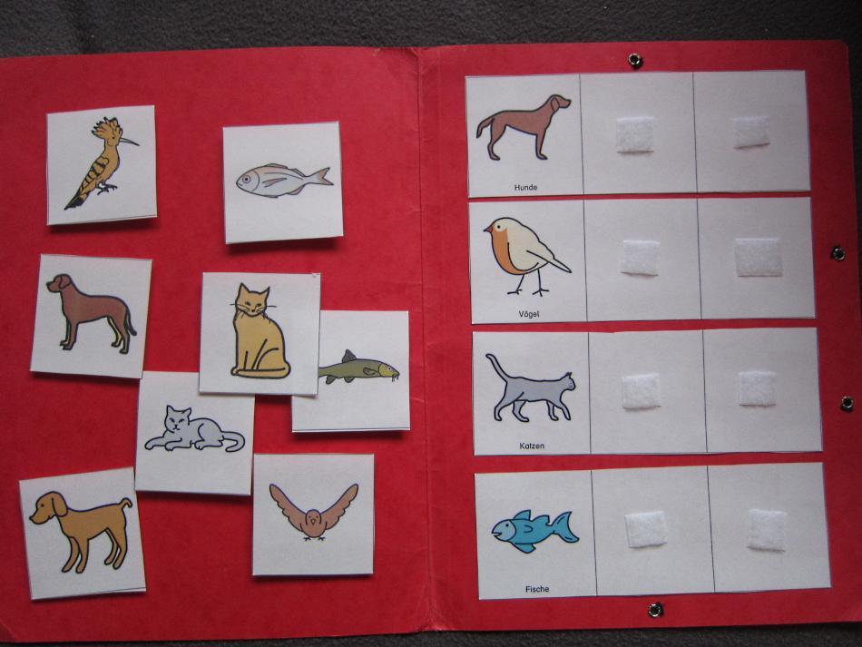 Aufgabenmappe Kategorienbildung mit Tieren