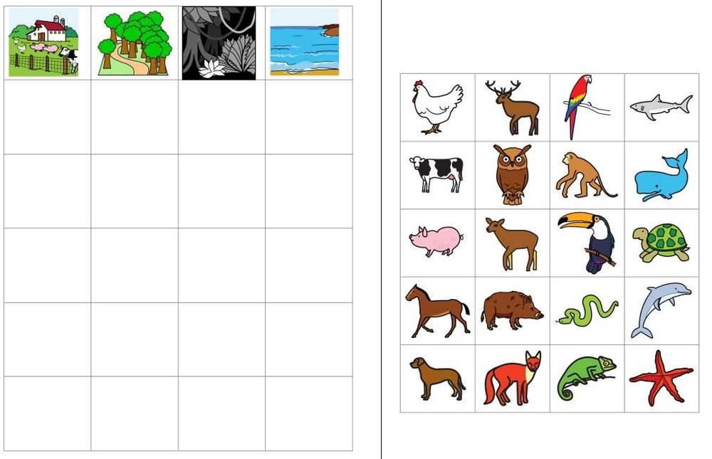 Aufgabenmappe - Kategorien - verschiedene Tiere