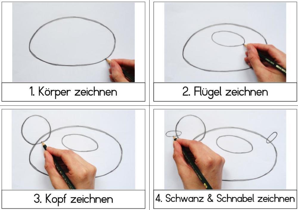 Zeichen-Anleitung Ente