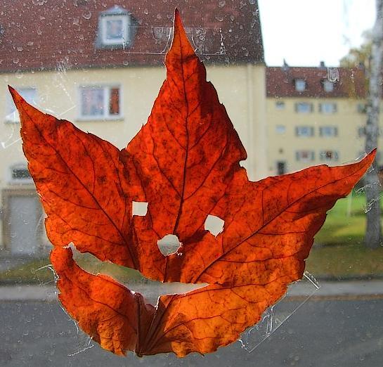 Fensterschmuck - Weinblatt-Gesichter
